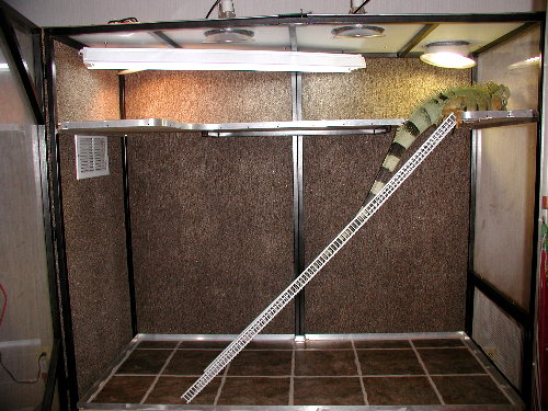 The Iguana Den Iguana Housing Cage Setup